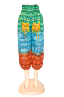 Multicolor Ladies Pant Style #1002